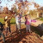 TOP 10 der besten Herbstaktivitäten mit Kindern